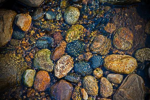 Karol  Livote - River Rock