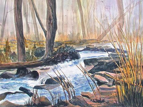Frank SantAgata - River Rush