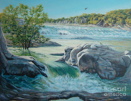 River waterfall by Terrie Leyton