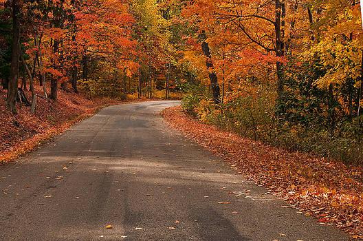 Randall Branham - Road to autumn