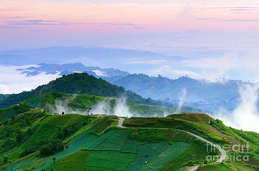 Road to top of misty hill at dawn by Noppakun Wiropart