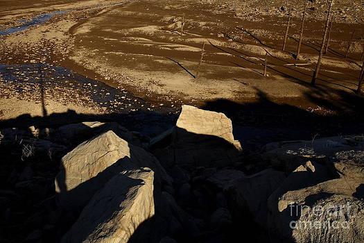 Rock Field by Maglioli Studios