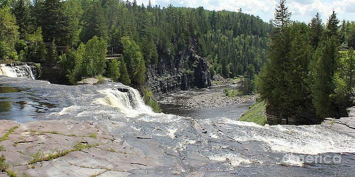 Sue Wild Rose - Rocks Near Falls