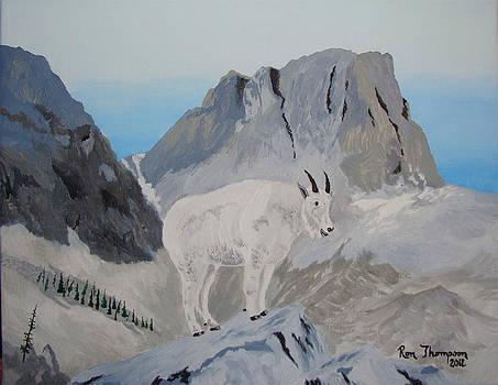 Rocky Mountain Goat by Ron Thompson