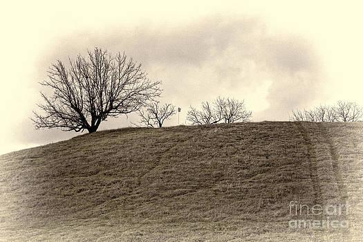 Chuck Kuhn - Rolling Hills I