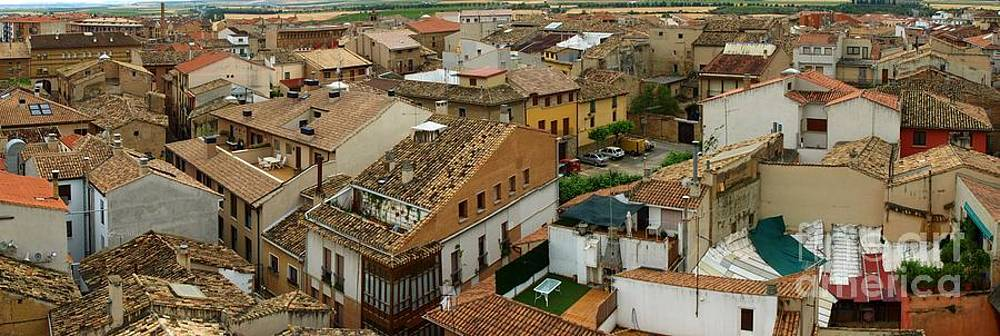 Rooftops of the Village by Alfredo Rodriguez
