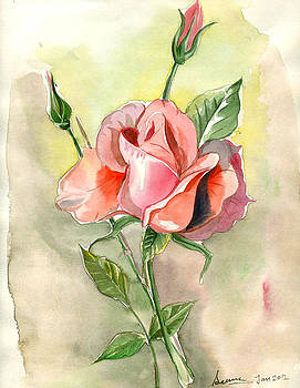 Rossy Rose by Seema Sinha
