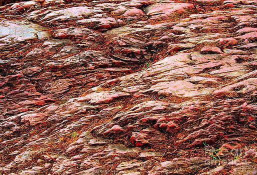 Rubel Stone by Michael Wyatt