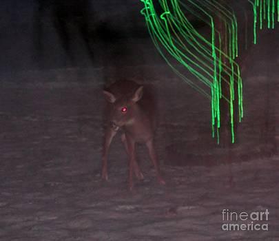 Judy Via-Wolff - Rudolf the Red Eyed Reindeer