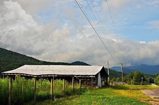 Rural Highways and Biways by Susan Leggett