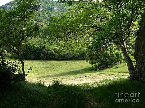 Rural Landscape by Alfredo Rodriguez