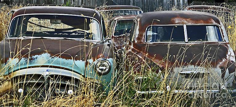 Rusted by Juls Adams