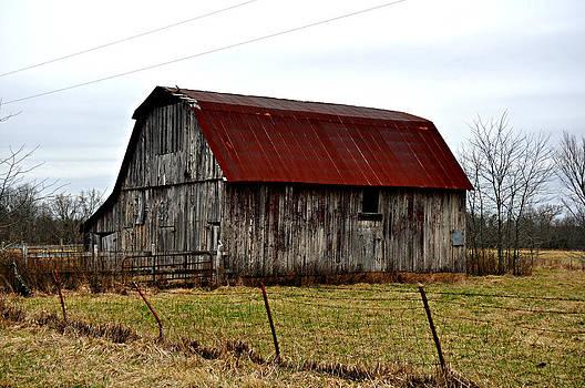 Marty Koch - Rustic Barn 2