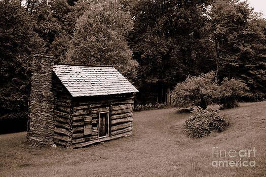 Rustic Cabin by Tom Carriker