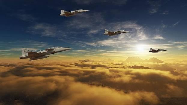 SA Air Force Iron eagles by Nicole Champion