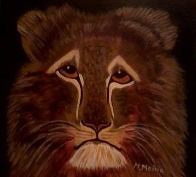 Sad Lion by Maria Medina