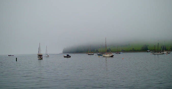 Sail Boats in the Fog by Kelsey Horne