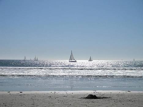 Sailboats at Venice Beach by Eric Barich
