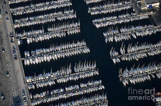 Sami Sarkis - Sailboats at wharf