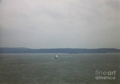 Sailing the Barnegat by Thomas Luca