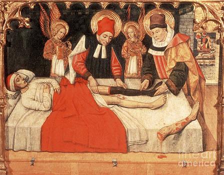 Science Source - Saints Grafting Leg Of Ethiopian Moor