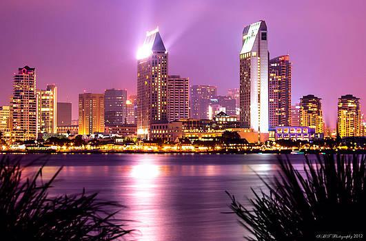 San Diego Skyline by Stephanie Haertling