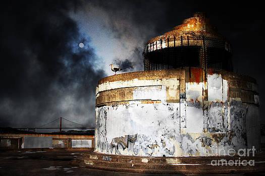 Wingsdomain Art and Photography - San Francisco Nights . 7D14028