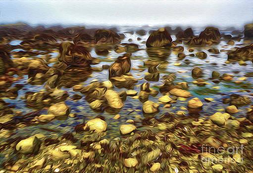 Gregory Dyer - San Simeon - Sea Shore - 01