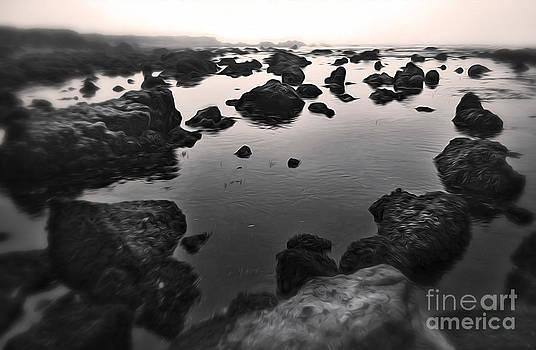Gregory Dyer - San Simeon - Sea Shore - 04