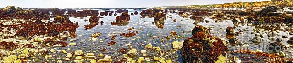 Gregory Dyer - San Simeon - Sea Shore - panorama