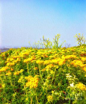 Gregory Dyer - San Simeon Flowers