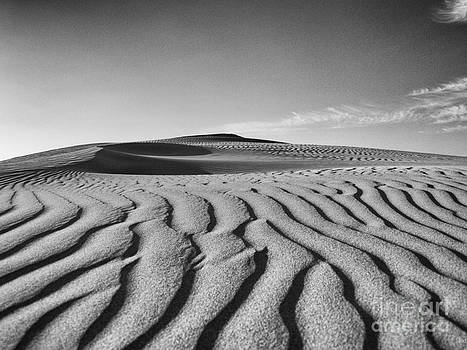 Sand Curves by Urban Shooters