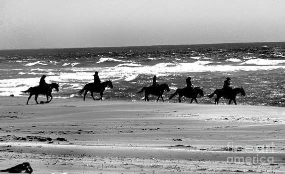 Nick Gustafson - Sand Riders 2