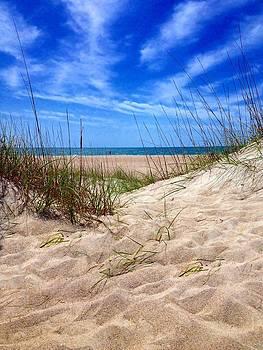 Sandy Dunes by Joan Meyland