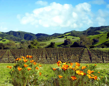Kurt Van Wagner - Sanford Ranch Vineyards