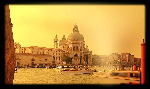 Santa Maria della Salute by Shelley Smith