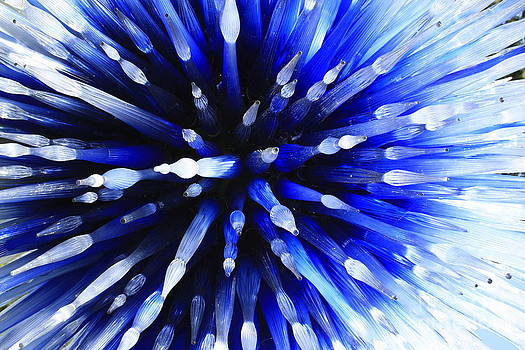 Sapphire Explosion by Jerry Bunger