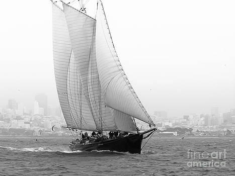 Schooner by the bay by Patty Descalzi