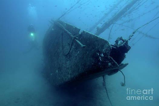 Sami Sarkis - Scuba diver exploring  Le Voilier Shipwreck