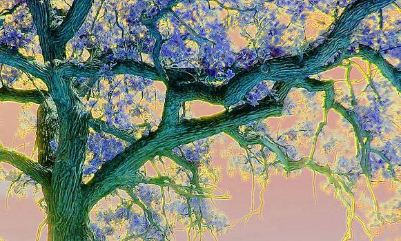 Cindy Boyd - Sea Green Tree