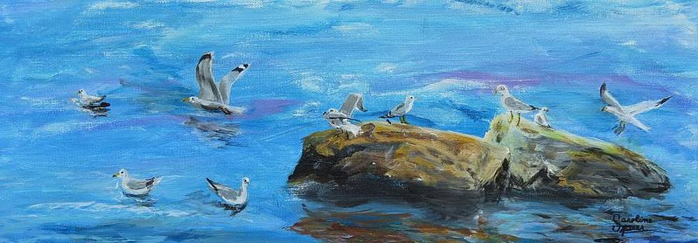 Sea Gull Landing by Carolyn Speer