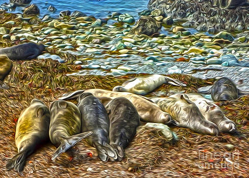 Gregory Dyer - Sea Lion - 02