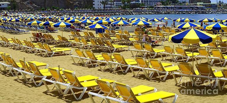 Sea of Umbrellas by Alfredo Rodriguez