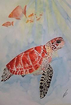 Sea Turtle II by Paula Steffensen