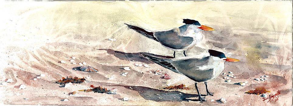 SeaBird Buffet by David Ignaszewski