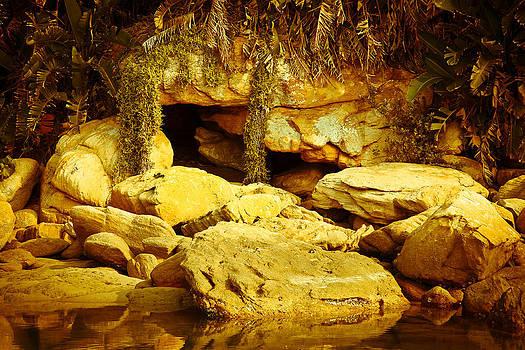 Secret Cave by Miguel Capelo