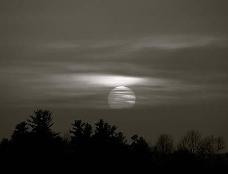 Secret Sunset by Rhonda Jones