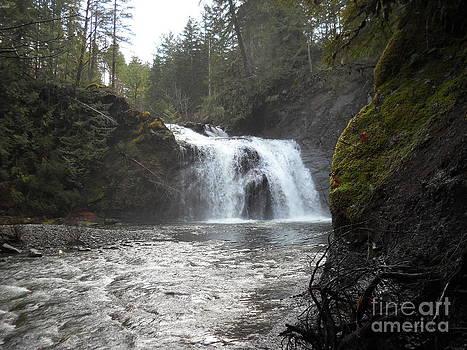 Secret Waterfall by Chris Murphy Elliott