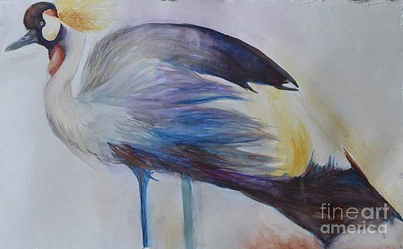 Secretary Bird by Paige Hval
