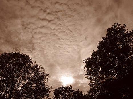 Shane Brumfield - Sepia Clouds